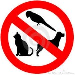 No animals Allowed